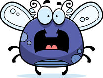 Bug clipart Download Clipart Clipart Bug Bug