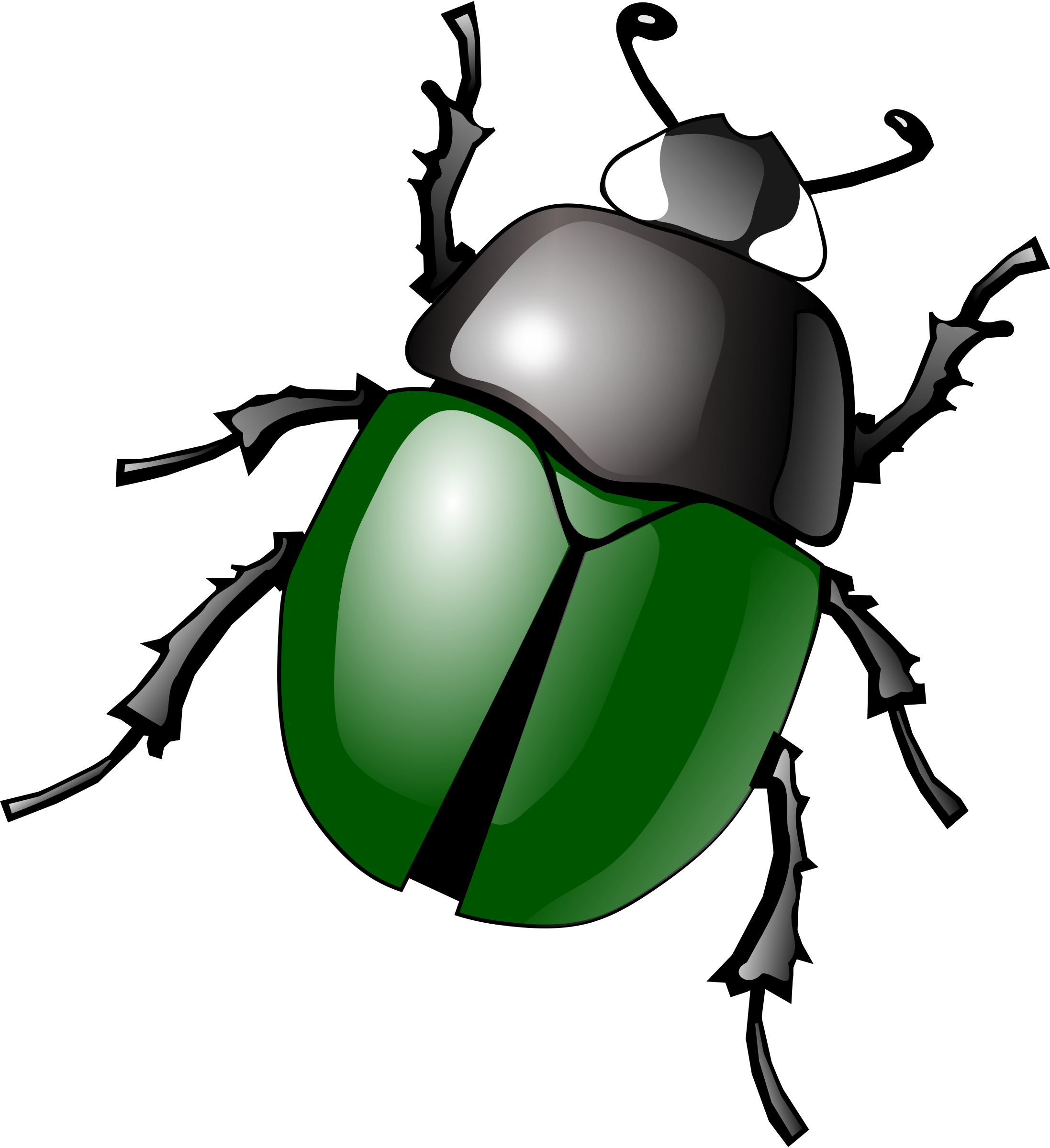 Dung Beetle clipart #5