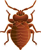 Bug clipart bed bug Free Bed Clip GoGraph Bedbug