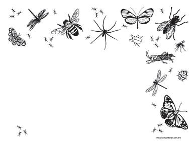 Bugs clipart border Summer Blank Borders Landscape Teacher
