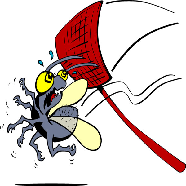 Bugs clipart fly swatter And Fly Swatter fly Fly