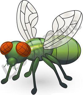Bug clipart fruit fly Images Best Fruit Flies Fruit