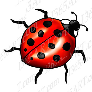 Bug clipart illustration From I365Art Beautiful Illustration Insect