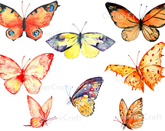 Bug clipart orange butterfly Insects butterflies clipart invitation yellow