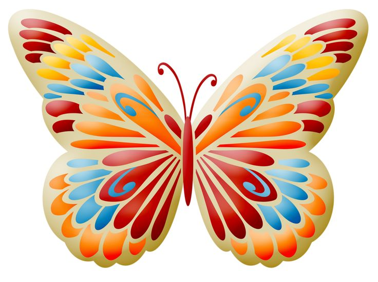 Bugs clipart orange butterfly Best Яндекс clipart images images