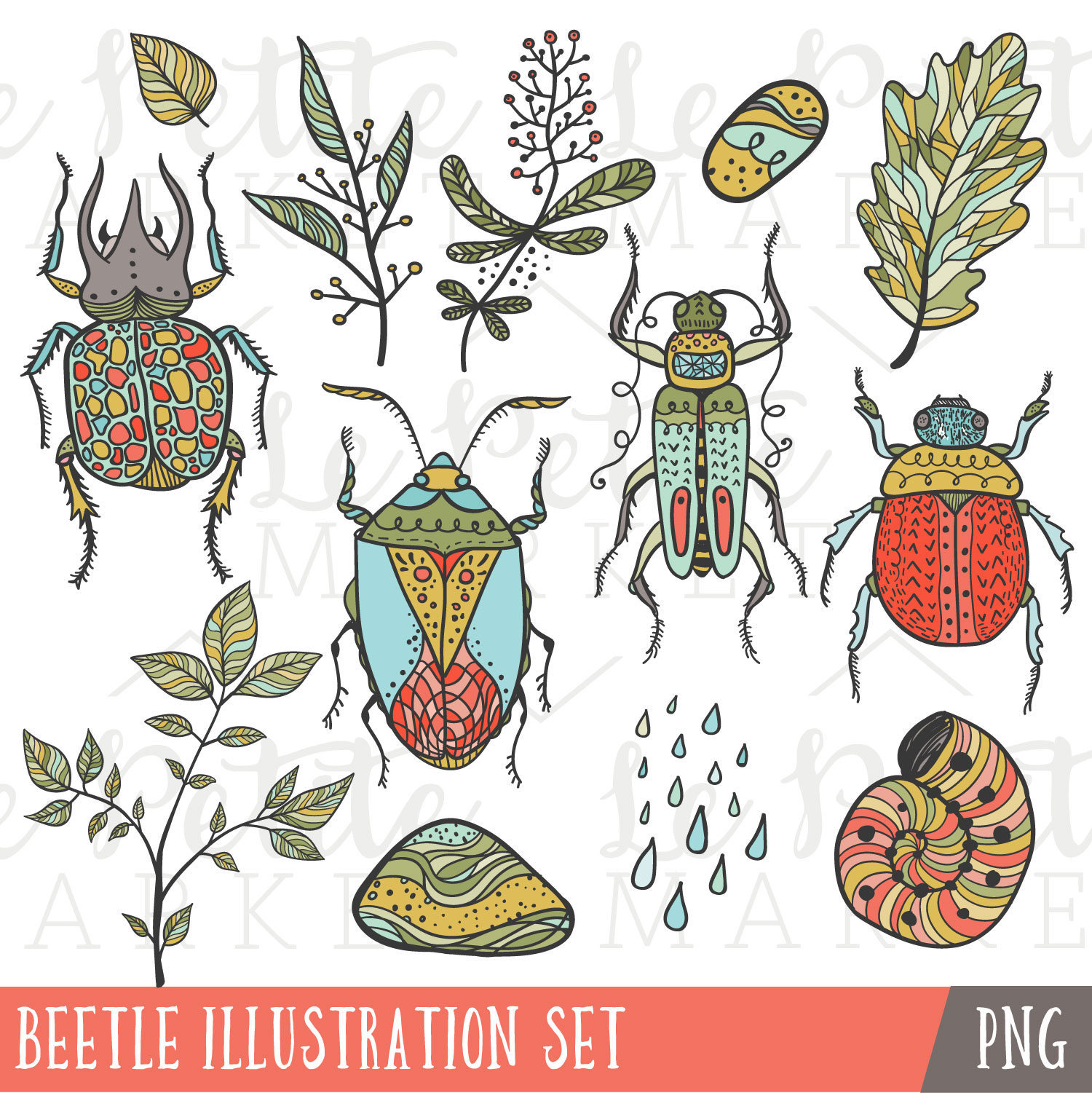 Bugs clipart summer This Bug Beetle file Set