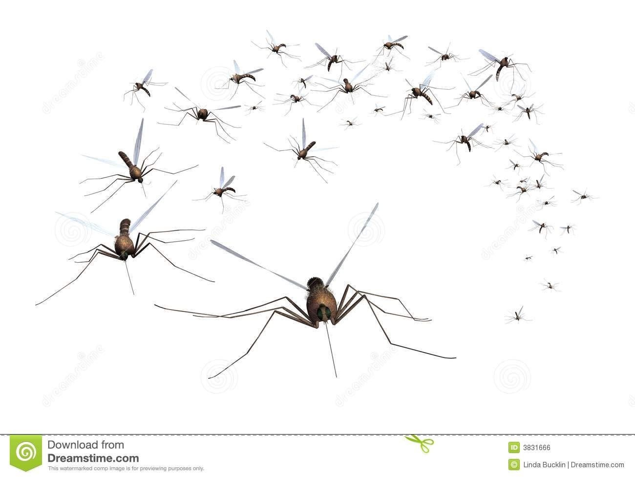 Bugs clipart swarm Clipart Animation Of Kid Mosquitos