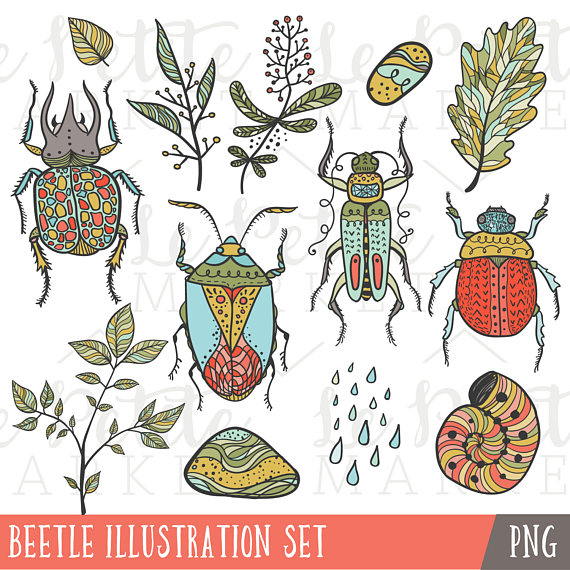 Bugs clipart jungle Explore from Art Bug Summer