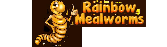 Bugs clipart mealworm Crickets Rainbow Rainbow and Mealworms