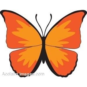 Bugs clipart orange butterfly Butterflies Clip Picture 2 Art