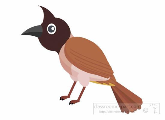 Bulbul clipart 1014 jpg : bird bulbul