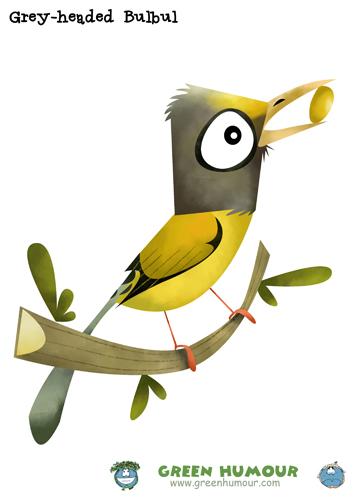 Bulbul clipart Humour: Birds the Humour Green