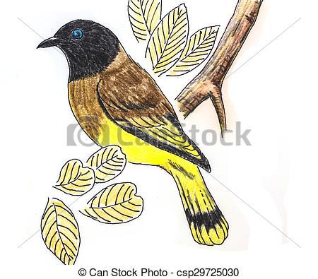 Bird clipart bulbul Drawing Bulbul bird The Bulbul