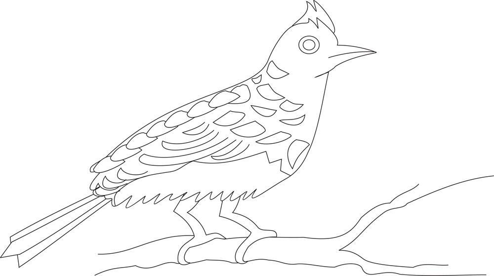 Bulbul clipart purple bird Pages Page Image Larger Bird