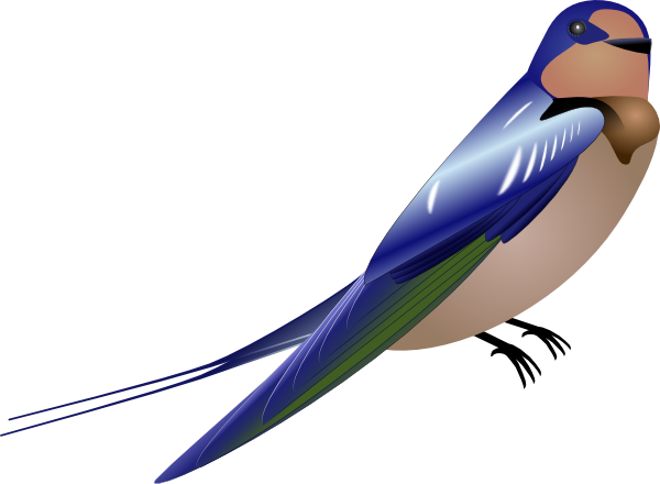 Brds clipart burung Image as: online at vector