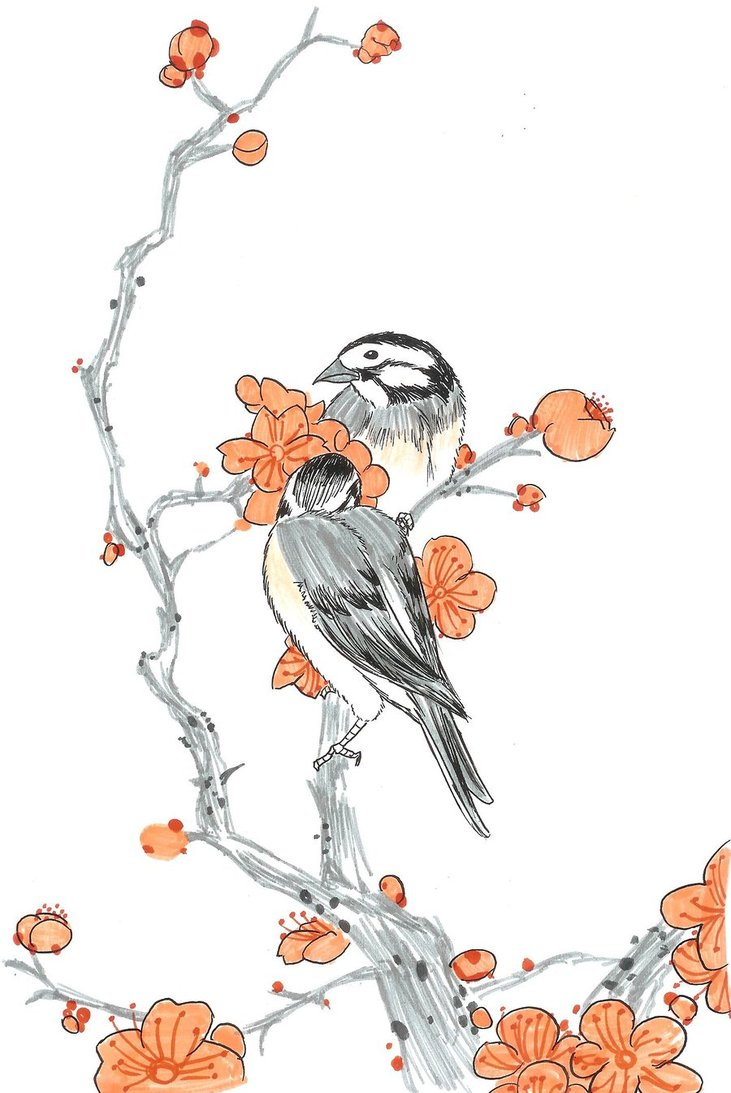 Bulbul clipart robin Chinese Chinese by Piikosama143 in
