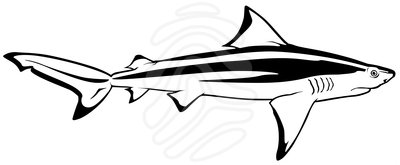 Bull Shark clipart Free shark%20fin%20clipart%20black%20and%20white Clipart Clipart Fin
