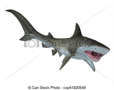 Bull Shark clipart jaws Free Illustration Illustration Jaws Shark