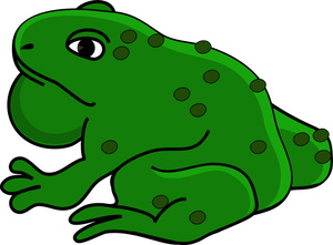 Toad clipart Drawings clipart Bullfrog clipart Download