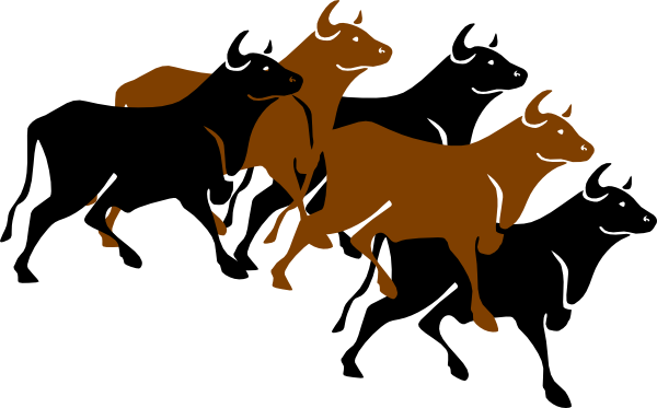 Bulls clipart Clip at this Bull vector