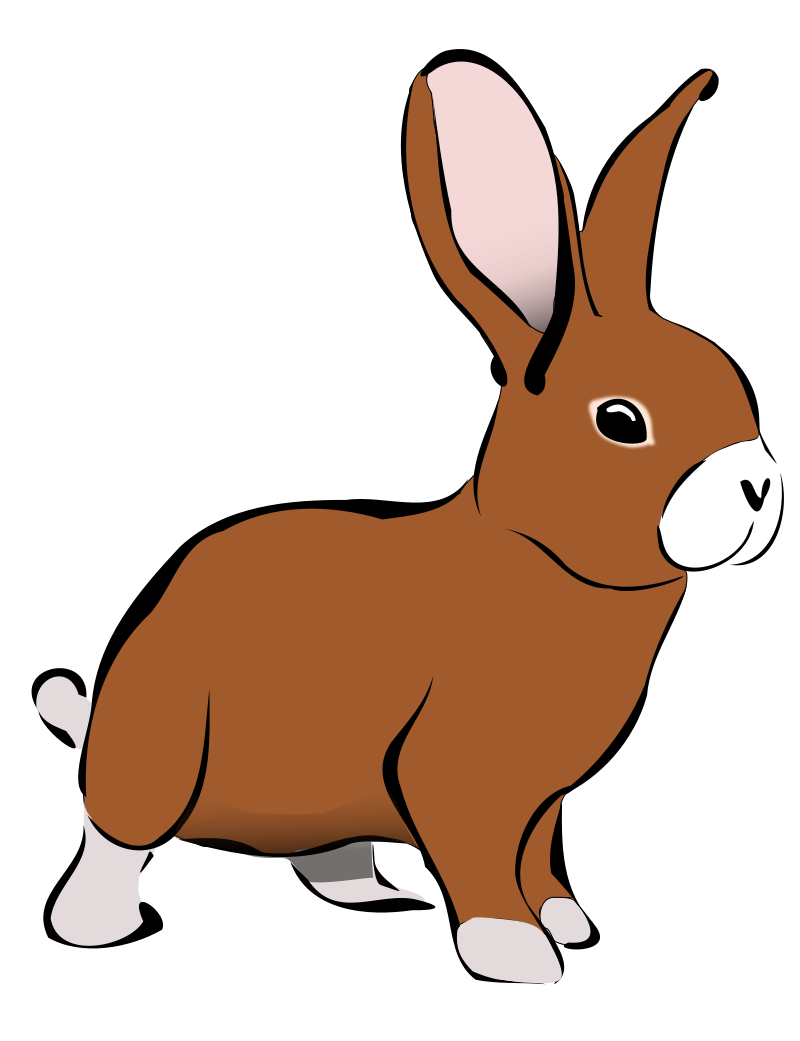 Rabbit clipart #3