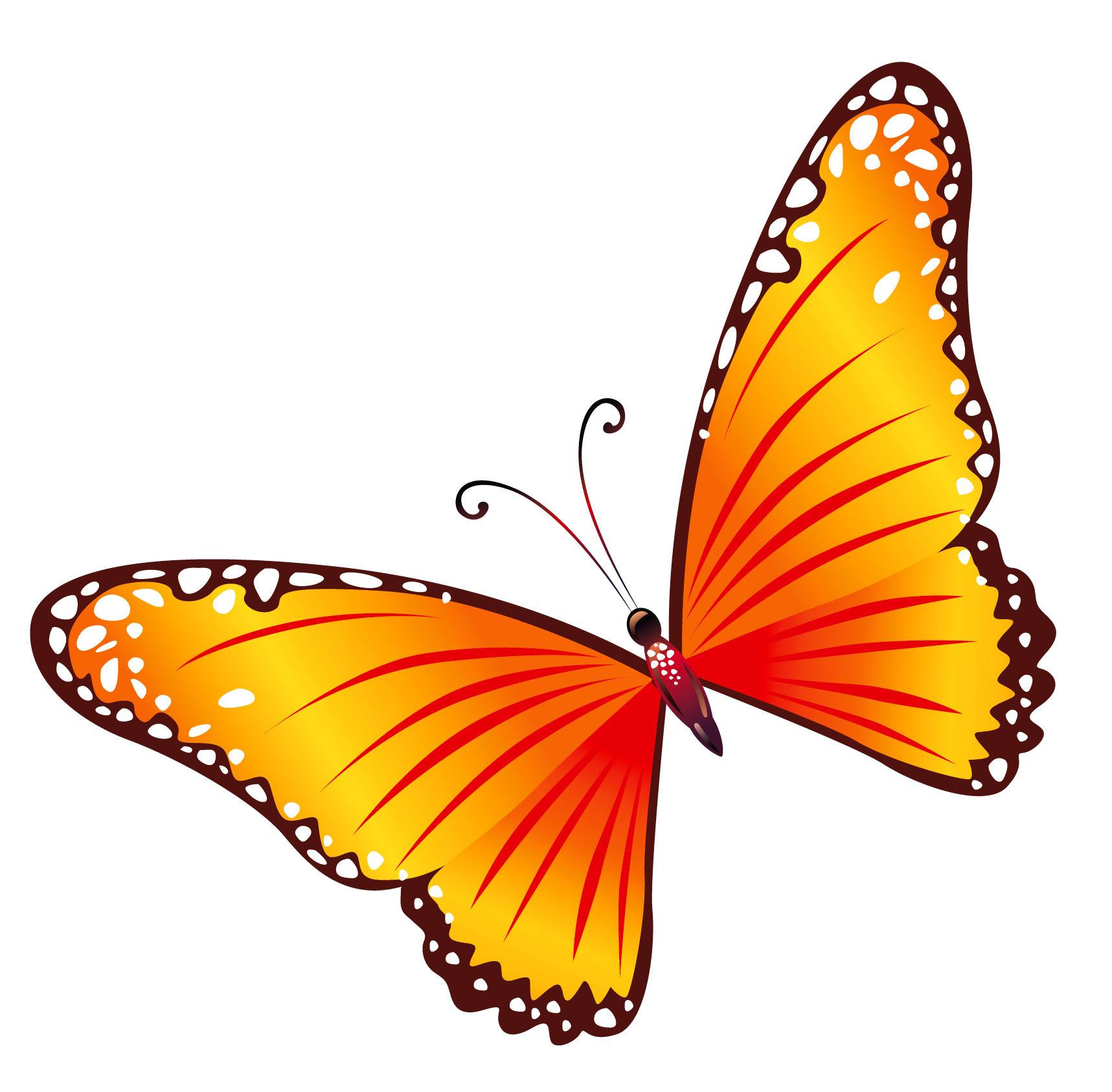 Bugs clipart orange butterfly Clipart FREE Clip  Clipart