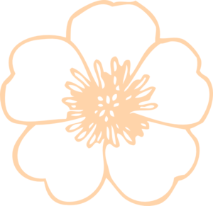 Buttercup clipart Art Flower at Art art