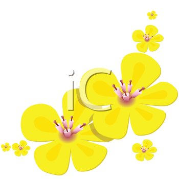 Buttercup clipart cartoon flower Clipart Free Royalty Buttercup Clip
