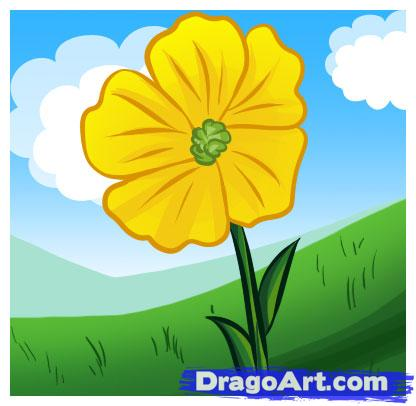 Buttercup clipart cartoon flower To Culture  a Buttercup