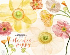 Buttercup clipart hawaiian flower Florals painted watercolor painted hand