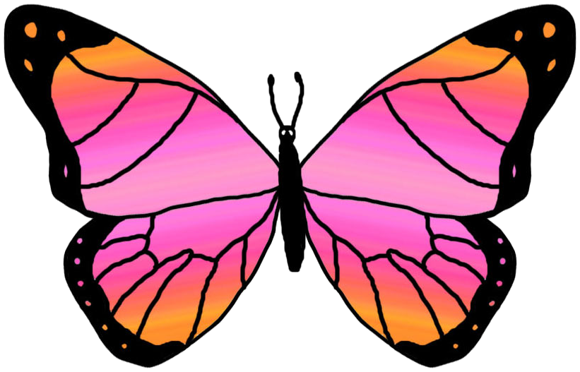 Monarch Butterfly clipart pink Free image  Clipart clip