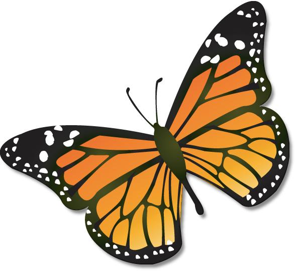 Monarch Butterfly clipart Art butterfly Clipartix Butterflies art
