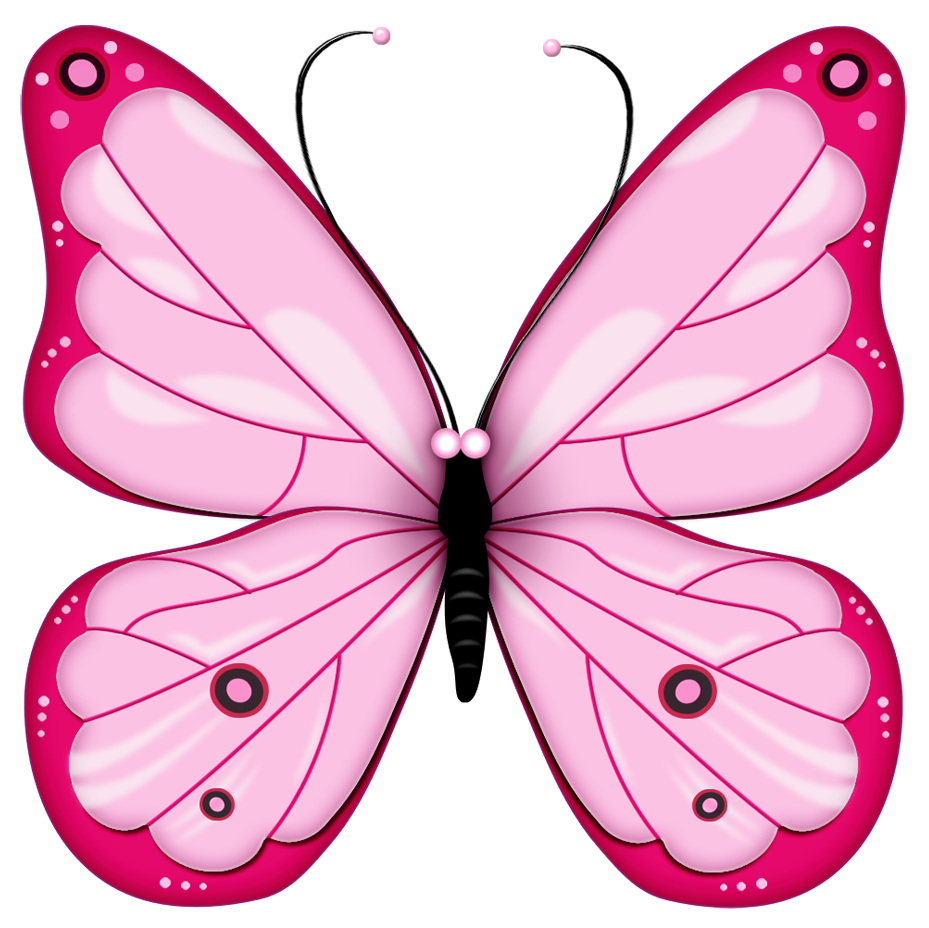 Butterfly clipart #9