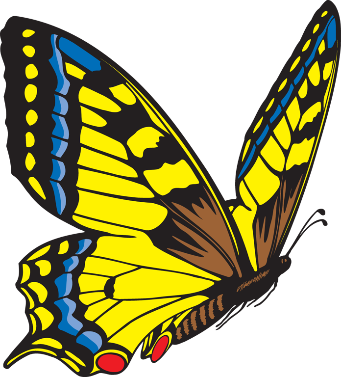 Butterfly clipart #2