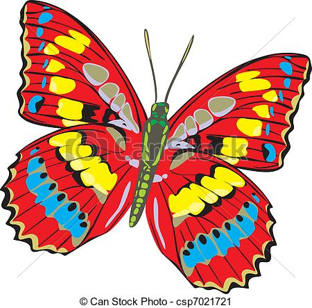 Butterfly clipart colored Multi colored csp7021721 beautiful butterfly