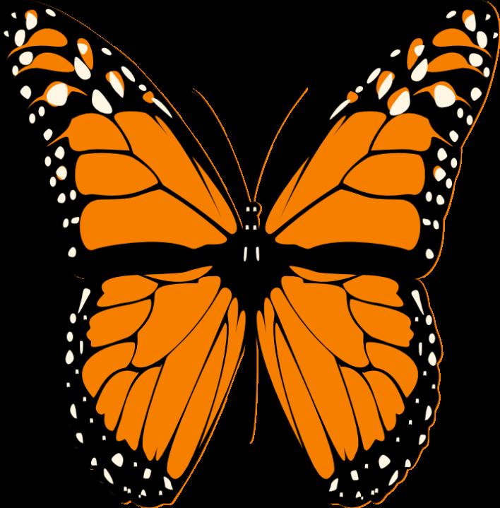 Butterfly clipart mariposa BUTTERFLY CLIPART CLIP ART