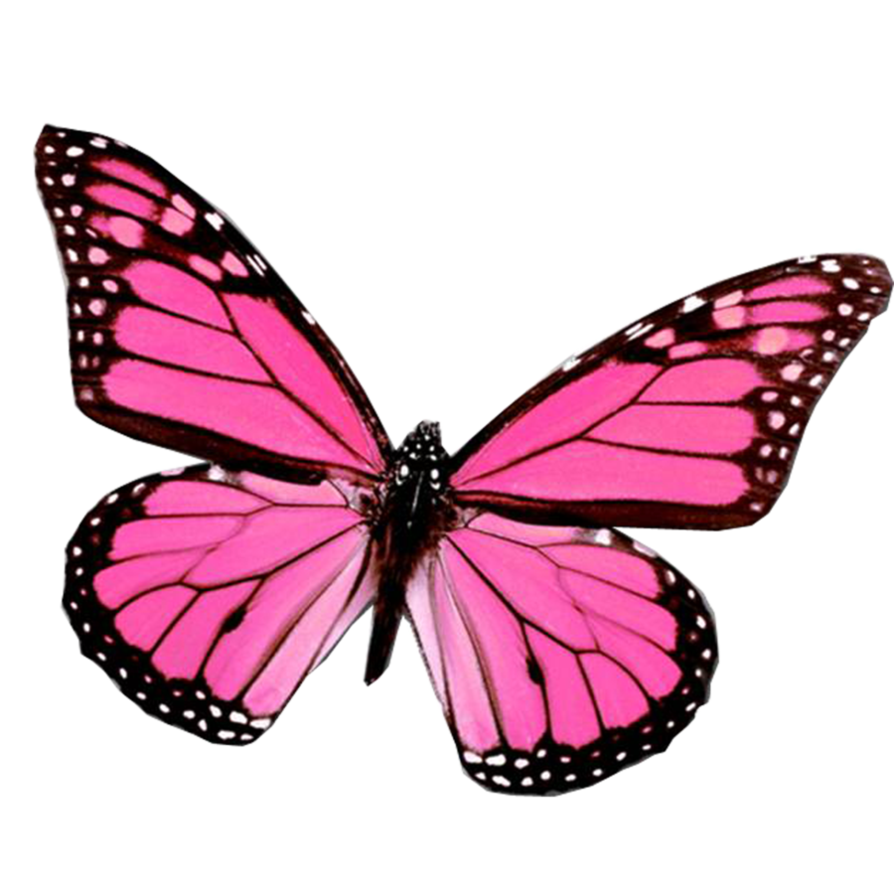 Butterfly clipart mariposa Mariposa_png_by_juli_gonzalez and Clipart Best mariposa_png_by_juli_gonzalez