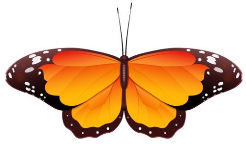 Bugs clipart orange butterfly Download Cartoon clip butterfly to