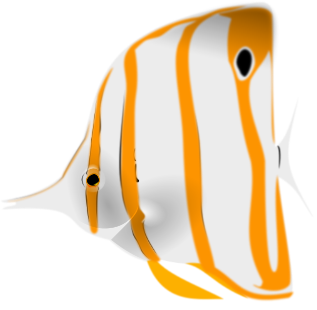 Butterflyfish clipart Art Butterflyfish Download Copperband Clip