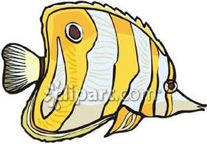 Butterflyfish clipart Panda Fish Free Yellow Clipart