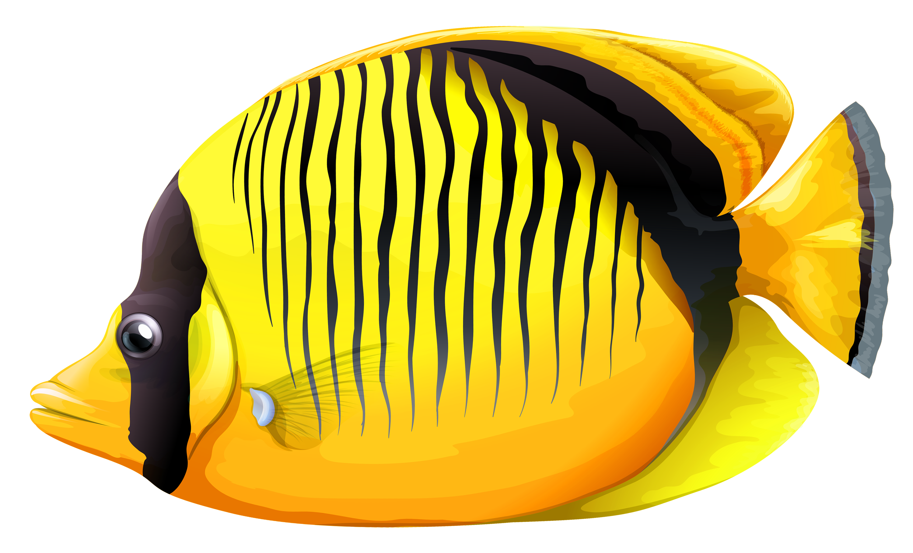 Butterflyfish clipart Fish Yellow PNG PNG Butterfly