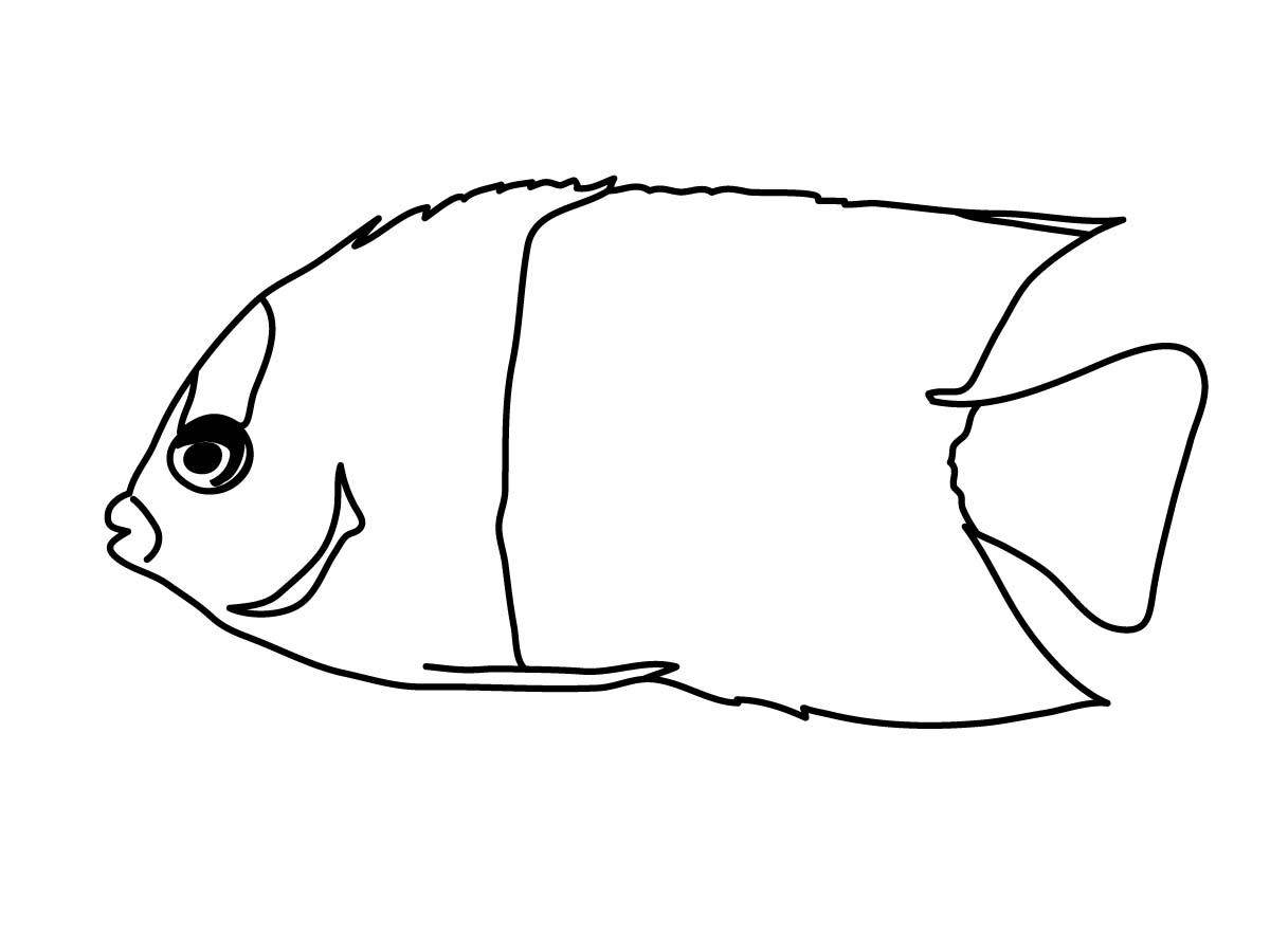 Angelfish clipart black and white Black  Clipart Gallery And