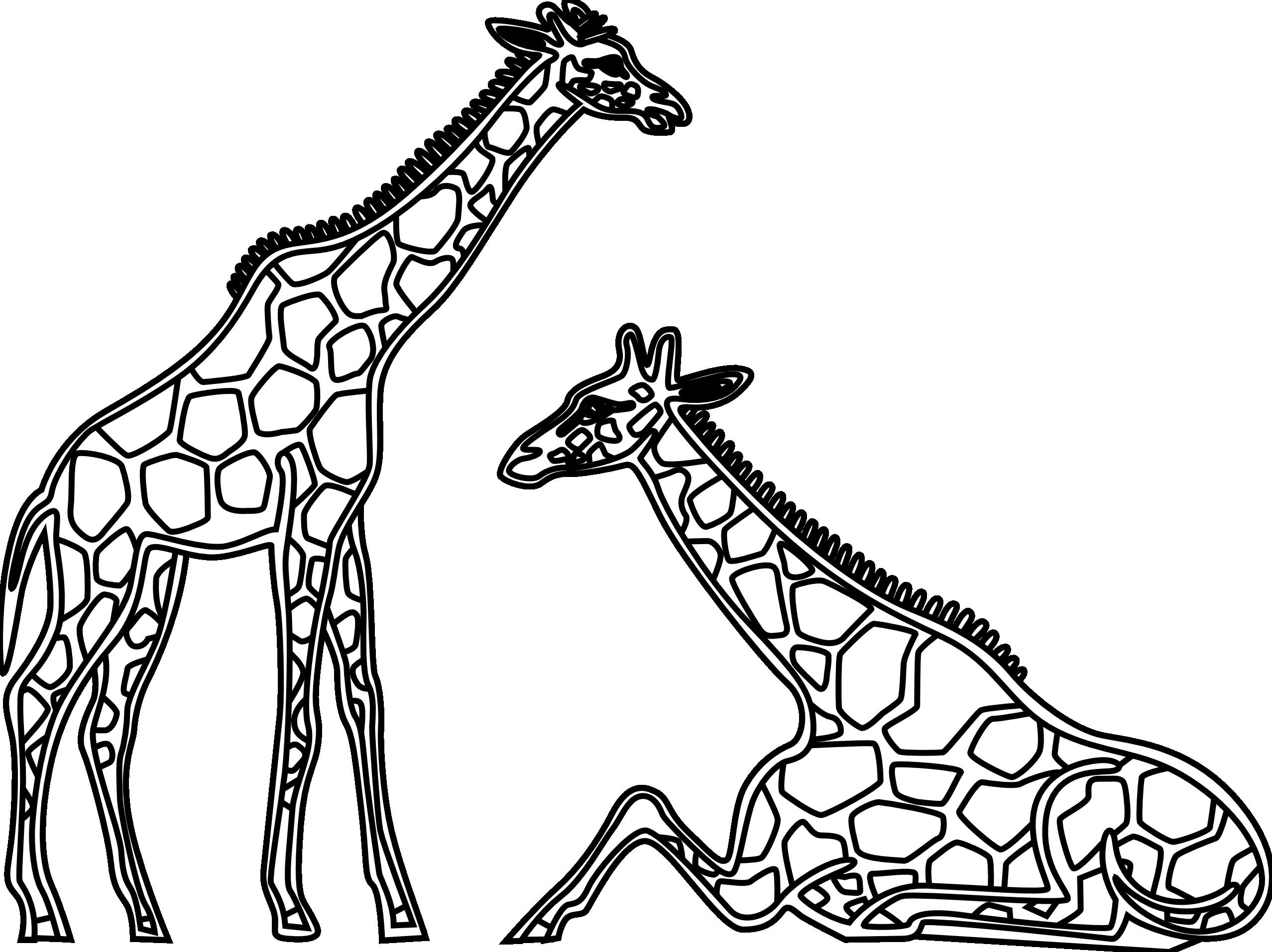 Black & White clipart giraffe Black White and Giraffe photo#5