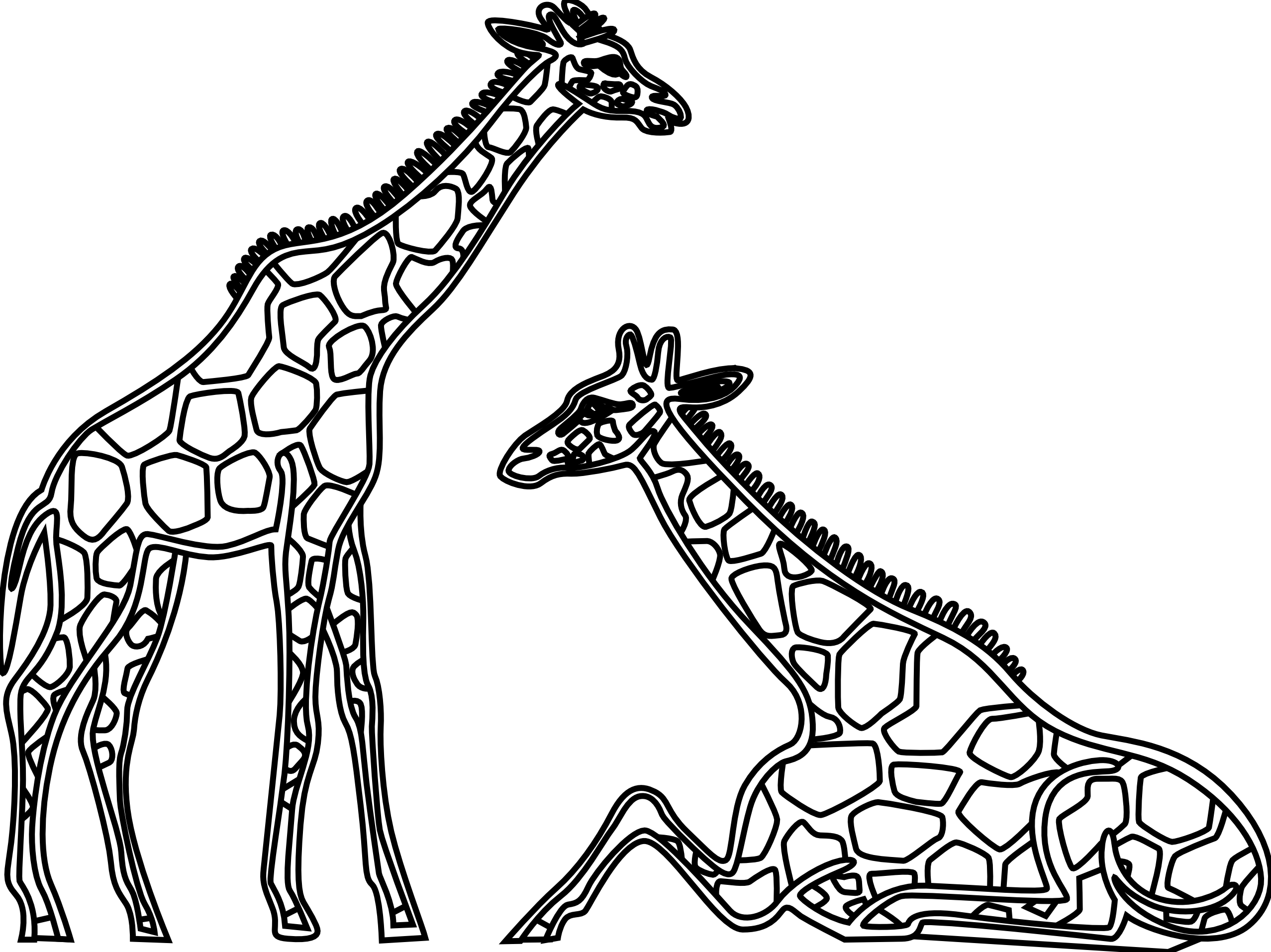 Zipper clipart transparent Black Giraffe And Giraffe White