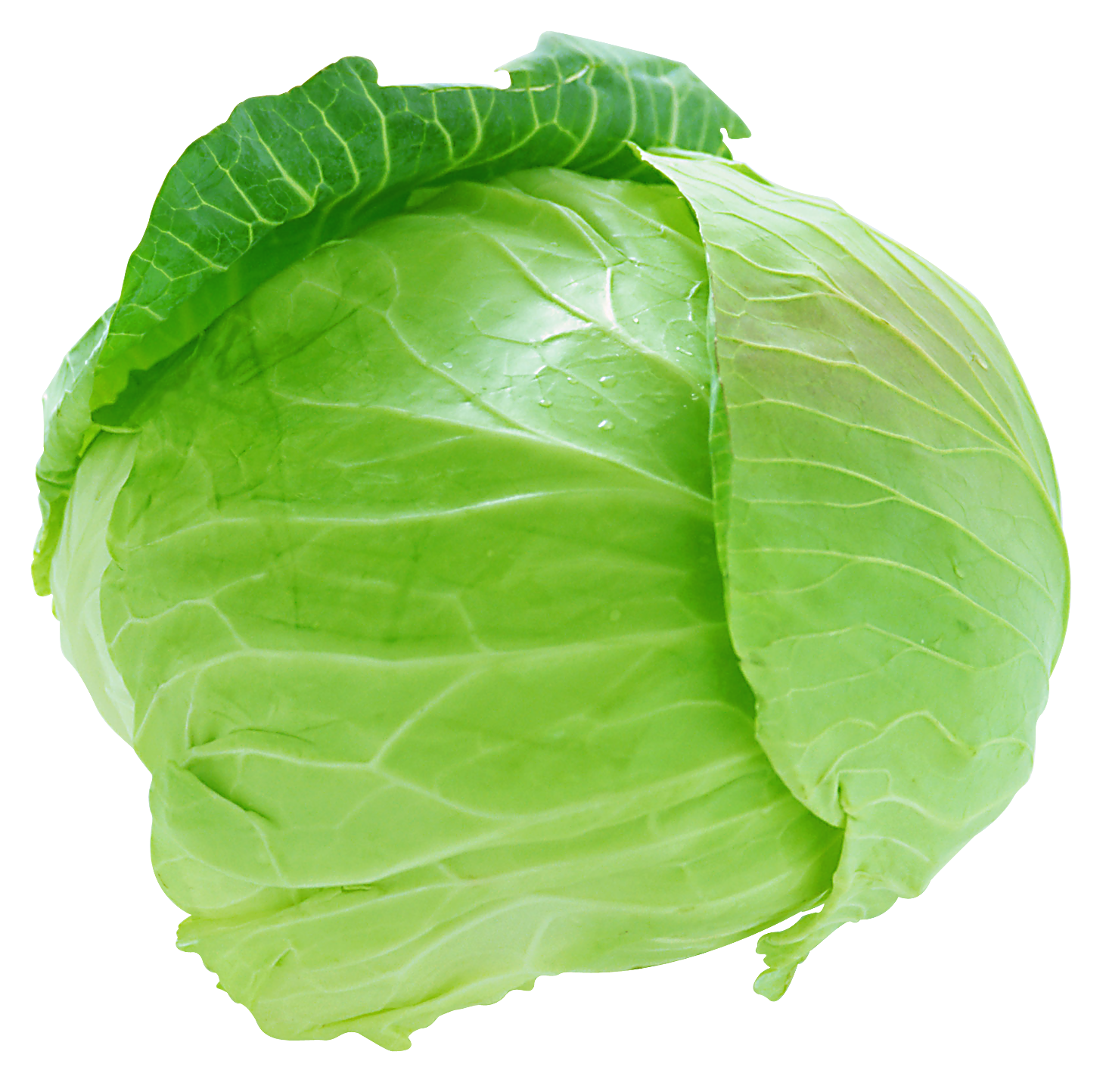 Lettuce clipart face Free org Cliparts Cabbage DownloadClipart