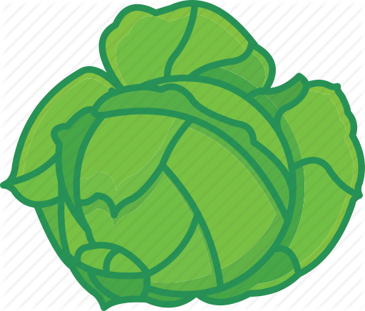 Cabbage clipart ball Vegetables cabbage vegetables  cabbage