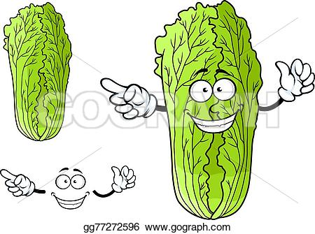 Cabbage clipart face Character Healthy white cabbage Drawing