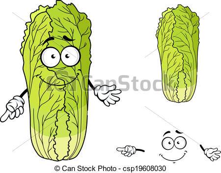 Cabbage clipart face Chinese Cabbage Clipart cliparts Cabbage