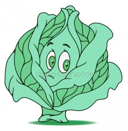 Cabbage clipart green salad Stock Cabbage — Royalty Cabbage