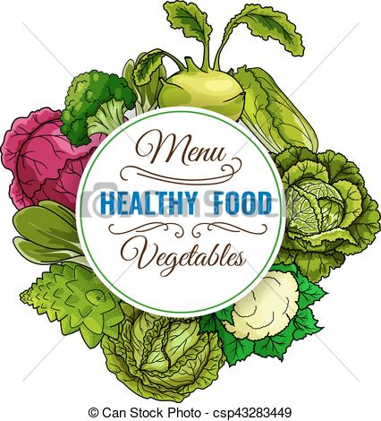 Cabbage clipart healthy food Healthy EPS vegetable vegetable Vector